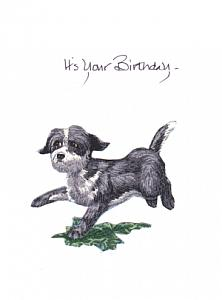 Celebration Pup