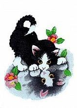 Kitten Enc