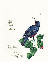 Get Well Robin